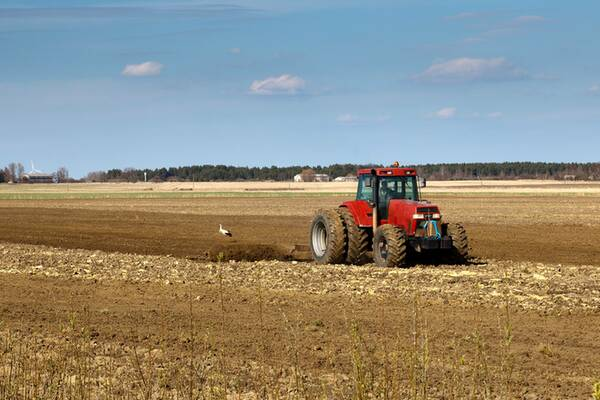 farm-diversification-600